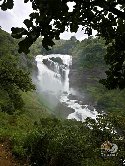 Mallalli Falls 6 - Mallalli Falls