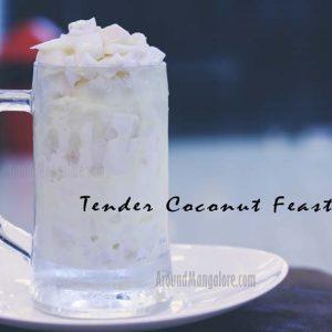 Tender Coconut Feast Mango Berrys Natural Ice Cream Marnamikatte Mangalore 300x300 - Mango Berrys - Marnamikatte