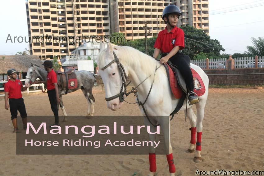 Mangaluru Horse Riding Academy - Kadri, Mangalore
